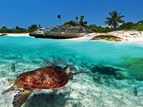 La magia del Caribe