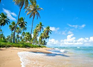 Jamaica, Islas Caymán y México