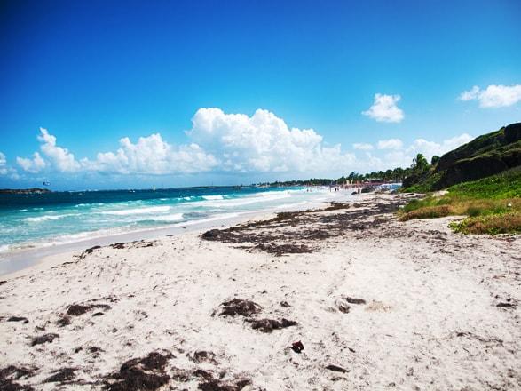 Paseo Tropical, Antillas, Puerto Rico, Bahamas