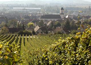 Croisière Eberbach
