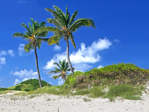 Croisi 232 Re Saint Vincent Et Les Grenadines Informations