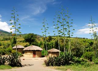 Croisière Maputo(Mozambique)