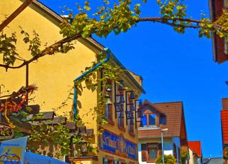 Croisière Nierstein(Allemagne)