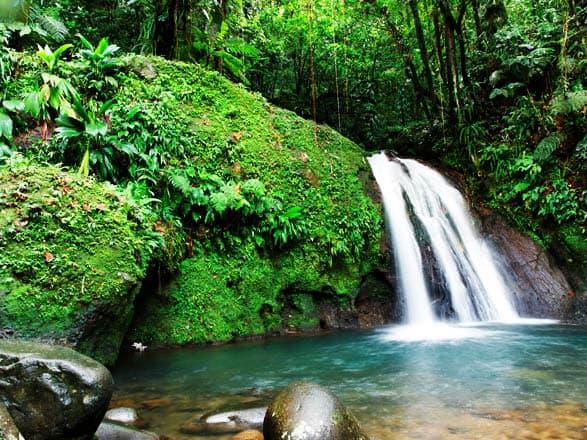Croisière Guadeloupe, St Martin, Antigua, La Dominique, Martinique, St Lucie, Grenade...