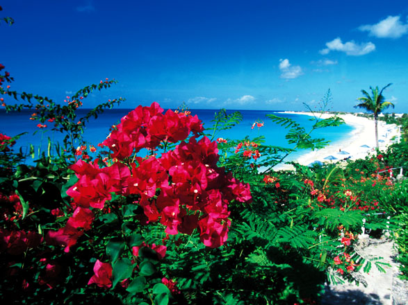 Antilles et Iles Vierges
