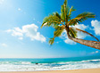 Caribe Este