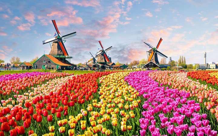 Croisière Amsterdam