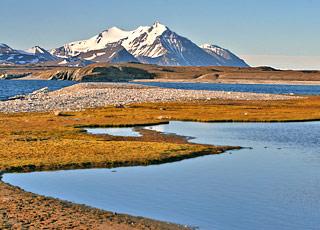 Croisière Ours polaires et aventure arctique : Expédition au Spitzberg avec accompagnateur francophone