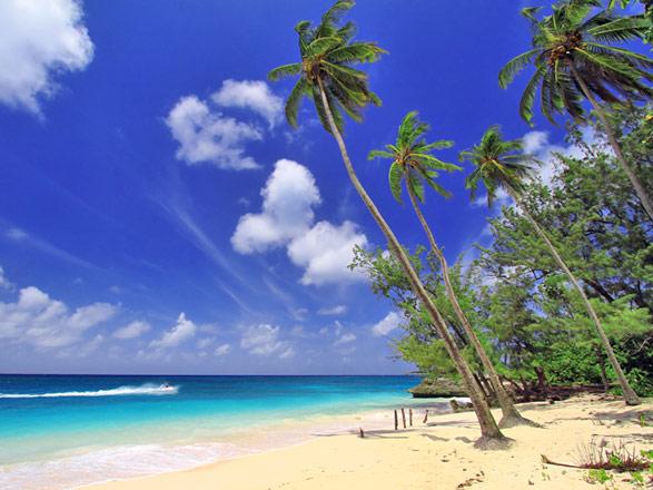 Croisière Iles au Vent : Ste Lucie, Dominique, Antigua, St Kitts, Martinique...