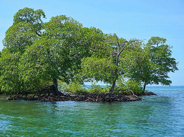 Croisière Panama, Colombie, Jamaïque, Iles Caïman