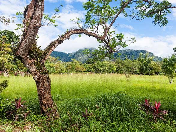 croisière Caraïbes et Antilles : Légendes des Caraïbes