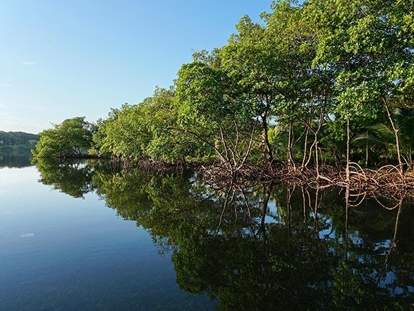 Croisière Antilles au départ du Panama