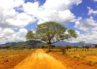 Croisière EXPÉDITION : Les îles du Cap-Vert - Vol retour inclus