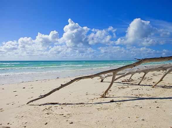 Bahamas (Freeport)