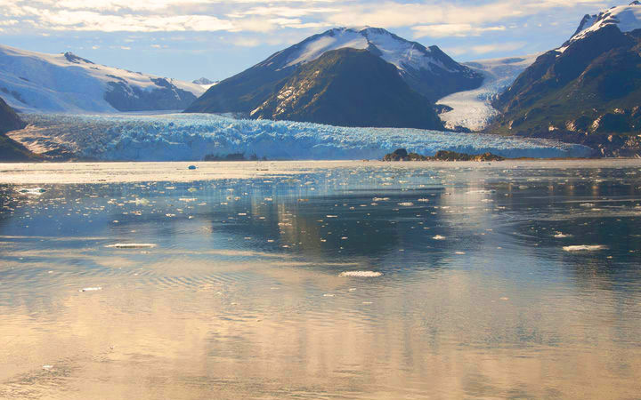 Croisière Glacier Amalia