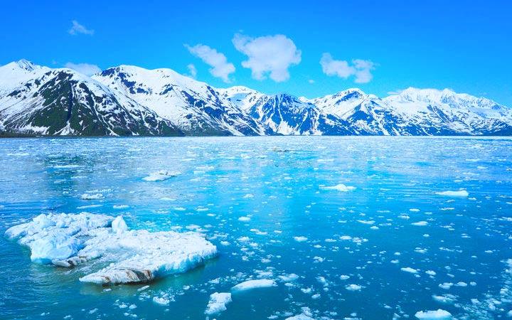 Croisière Glacier Hubbard