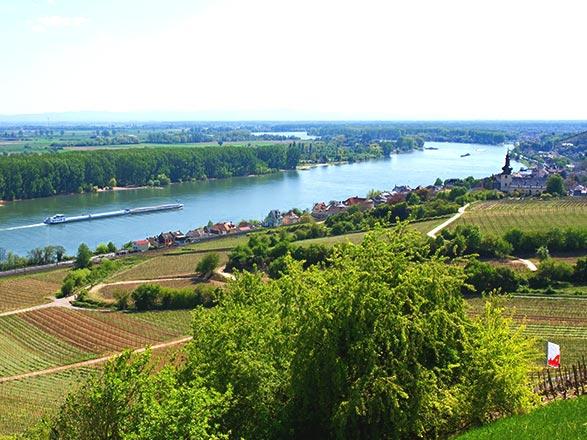 Rudesheim - Nierstein (Allemagne)