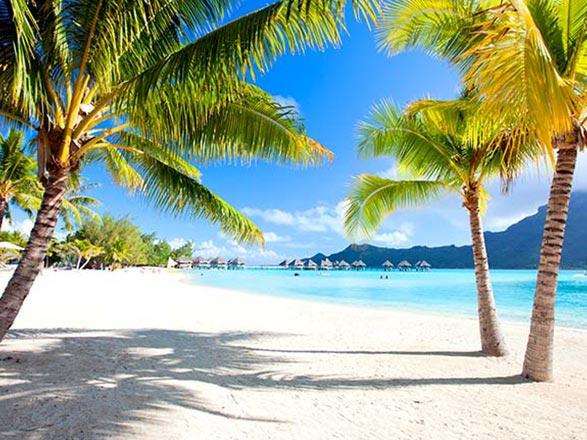 Croisière Iles Cook et îles de la Société