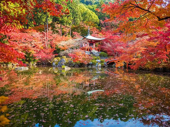 Croisière Pétales et Folklores du Japon