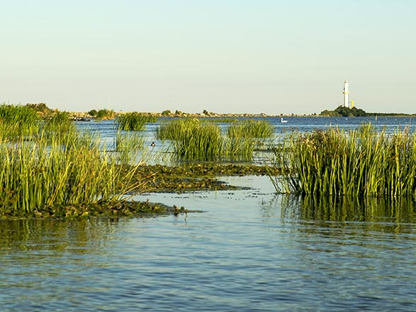 croisière Danube - Danube : De la mer Noire vers le Danube bleu (TUL) - Vols inclus