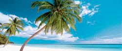 Crociera Antille