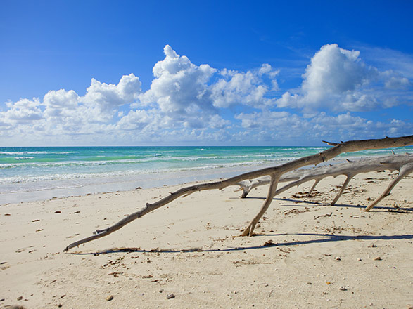 Crociera Freeport(Bahamas)