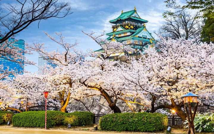 Crociera Osaka
