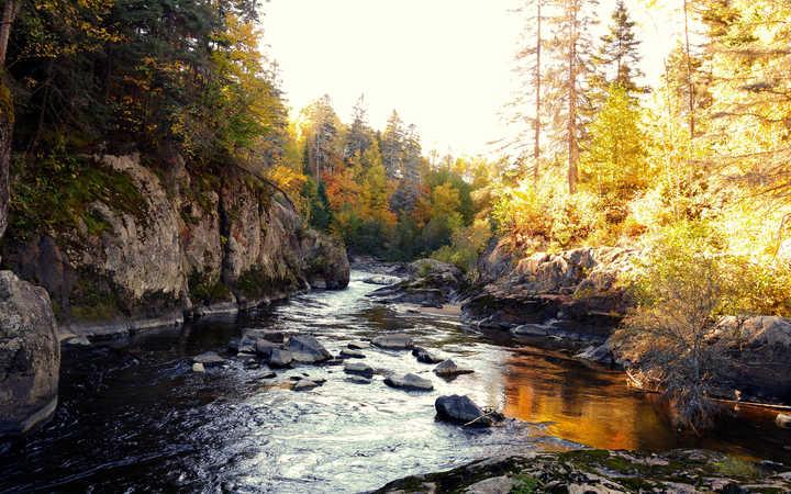 Crociera Saguenay River