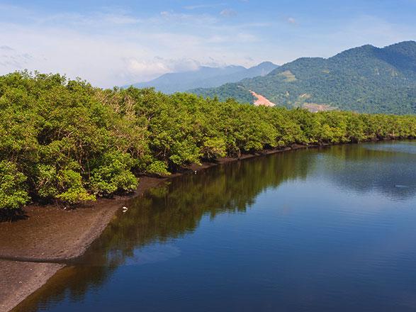 croisière Sud America - Canale di Panama : Brasile